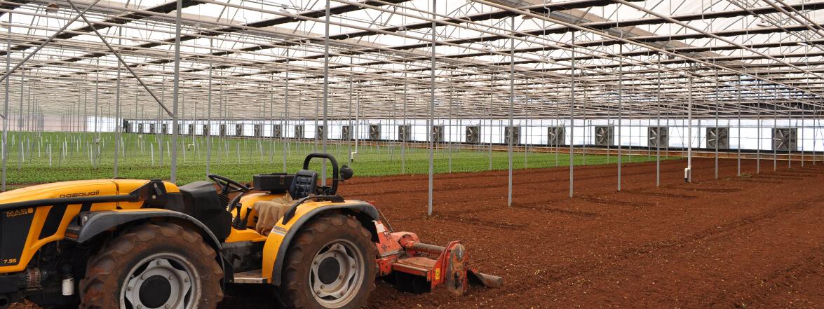 Servizi Elettrosystem per il settore agricoltura